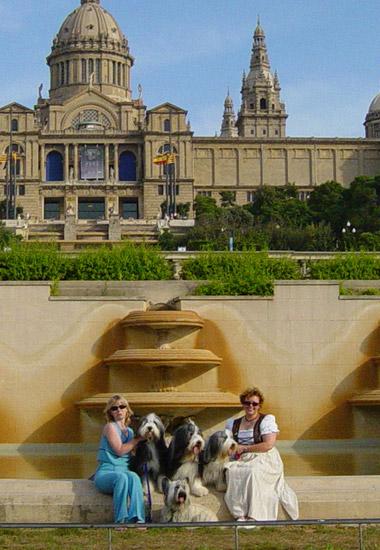 Four Brandies in Barcelona